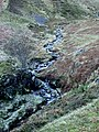 Stoneycroft Gill - geograph.org.uk - 41990.jpg