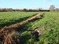 Stream, Sudbury common lands - geograph.org.uk - 626759.jpg