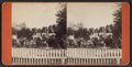Street view, Lockport, N.Y, by F. B. Clench.png