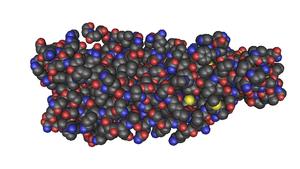 Panton–Valentine leukocidin - Image: Structure Of The Panton Valentine Leucocidin F Component From Staphylococcus Aureus MMDB ID 57186 PDB ID 1PVL