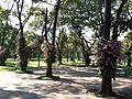 Suan Luan Park - panoramio - carbon60.jpg