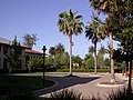 Sun Microsystems Santa Clara campus grounds.jpg