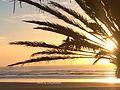 Sunset of Sidi Kaouki beach.jpg