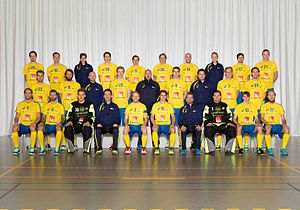 Sweden men's national floorball team - Sweden men's national floorball team (2014)