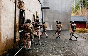 Särskilda operationsgruppen - Image: Swedish SOG Training