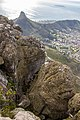 Table Mountain, Cape Town (MP) 2018 184.jpg
