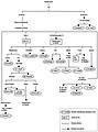Tableau simplifié des familles chérifiennes de Fès.jpg