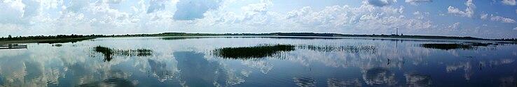 An artificial wetland.