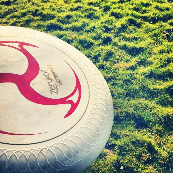 Taupe et frisbee