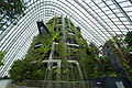 The Fall in the Cloud Forest, Gardens by the Bay, Singapore - 20120617-01.jpg