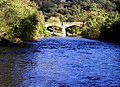 The River Swale at Richmond - geograph.org.uk - 271387.jpg
