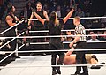 The Shield at Elimination Chamber 2013.jpg
