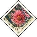 The Soviet Union 1970 CPA 3944 stamp (Dahlia).jpg