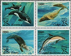 The Soviet Union 1990 CPA 6251-6254 block of 4 (Marine Mammals. Killer whale, steller sea lion, sea otter and Short-beaked common dolphin).jpg