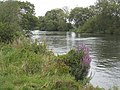 The Thames downstream from Sonning - geograph.org.uk - 952242.jpg