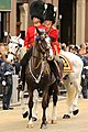 The Welsh Guards (8657843517).jpg