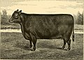 The breeds of live stock, and the principles of heredity (1887) (14594697708).jpg