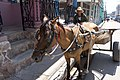 The brick lorry, Pinar Del Rio, Cuba (13967140300).jpg