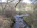The confluence of Burntongues Burn and the River East Allen - geograph.org.uk - 716728.jpg