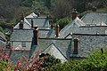 The rooftops of Clovelly - geograph.org.uk - 420660.jpg