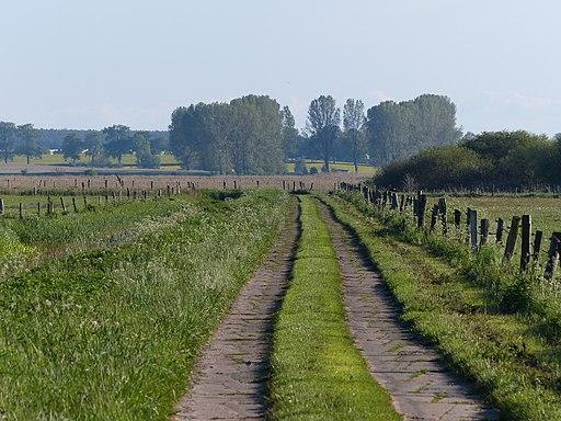 Thurbruch Ulrichshorst Betonplattenweg