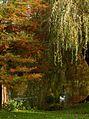 Thwaite Hall Gardens -6367 - panoramio.jpg
