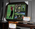 Tiger Woods signed photo collage and golf ball 2013.jpg