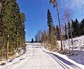 Tikkakoski ski track.jpg