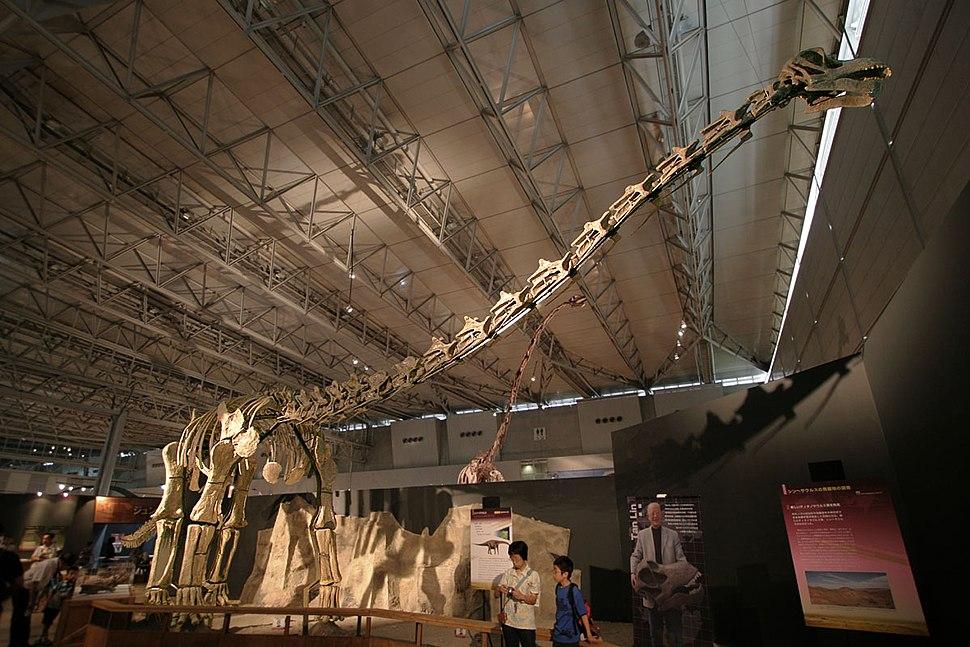 Titanosaur in Japan