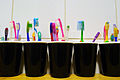 Toothbrushes for Children - 01.jpg