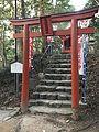 Torii of Inari Shrine in Sumiyoshi Shrine.jpg
