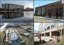 From top left, left to right: Office building, Westminster Christian Academy, St. Louis Missouri Temple, Energizer Holdings headquarters