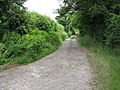 Track to Lower Broadfield - geograph.org.uk - 866106.jpg