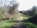 Trackbed of former railway east of Godmanchester - geograph.org.uk - 715864.jpg