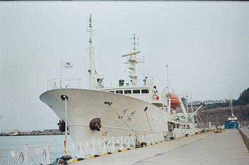 Training trawler ship Kaya.JPG