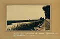 Tram line alongside the drive. Pyramids in the distance 1916.jpg
