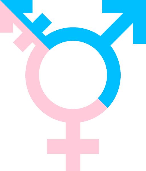 TransGender Symbol Color