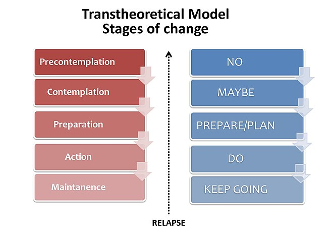 Stages of change, according to the transtheoretical model. Transtheoretical Model - Stages of change.jpg