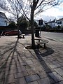 Tree seats, College Road, Exeter - geograph.org.uk - 1164428.jpg