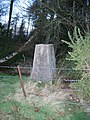Trig point on Spittalridding Hill - geograph.org.uk - 111512.jpg