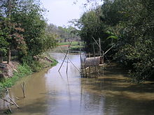 Bamboo bushes on the two banks of a creek which has a bamboo-made platform with a round roofing