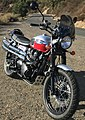 Triumph Scrambler Modded w Thunderbike Exhaust Renthal Road Ultra Low Handlebars Clearwater Lights (2014).jpg