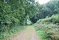 Tunbridge Wells Circular Path heading to Forge Farm - geograph.org.uk - 1493117.jpg