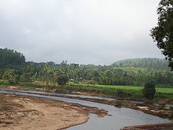 Tunga river at sringeri.jpg