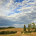 Tuscan Landscape 7.JPG