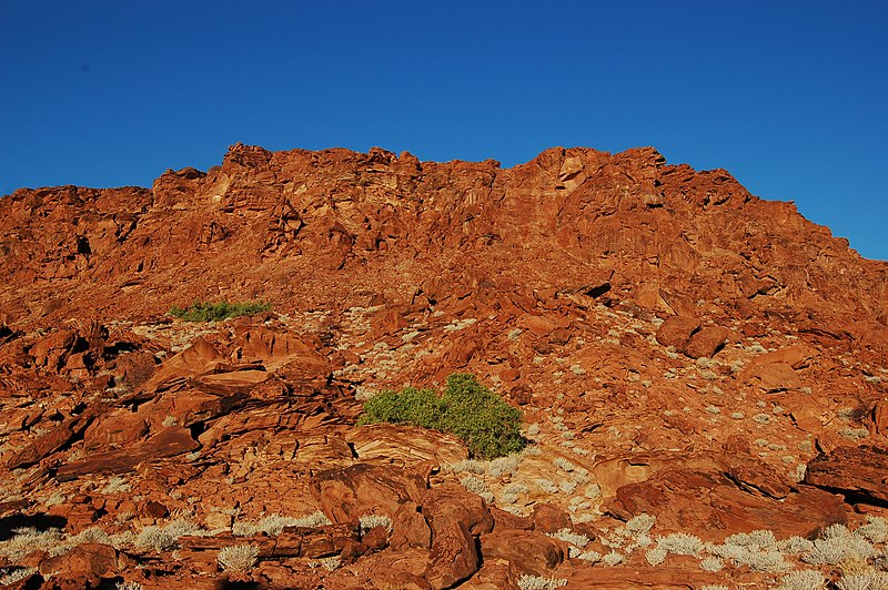 File:Twyfelfontein Rockpaintings, Namibia (3037462175).jpg