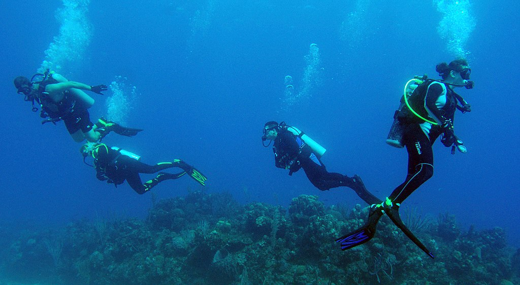 US Navy 081207-N-9769P-029 Divers swim over a reef during a certification dive as part of the Soldiers Undertaking Disabled Scuba (SUDS) program