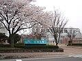 University of Aizu in bloom.jpg