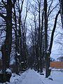 Uppsala - panoramio - satori.corvus.jpg