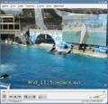 VLC 0.9.3 (cs).png